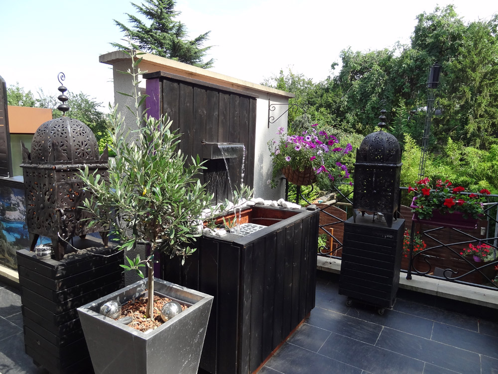 Am nagement terrasse ext rieur un professionnel en ile for Terrasse amenagement plantes